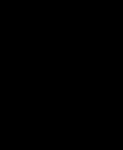 Veliero nero sfondo trasparente